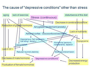 The_cause_of_depressive_conditions_